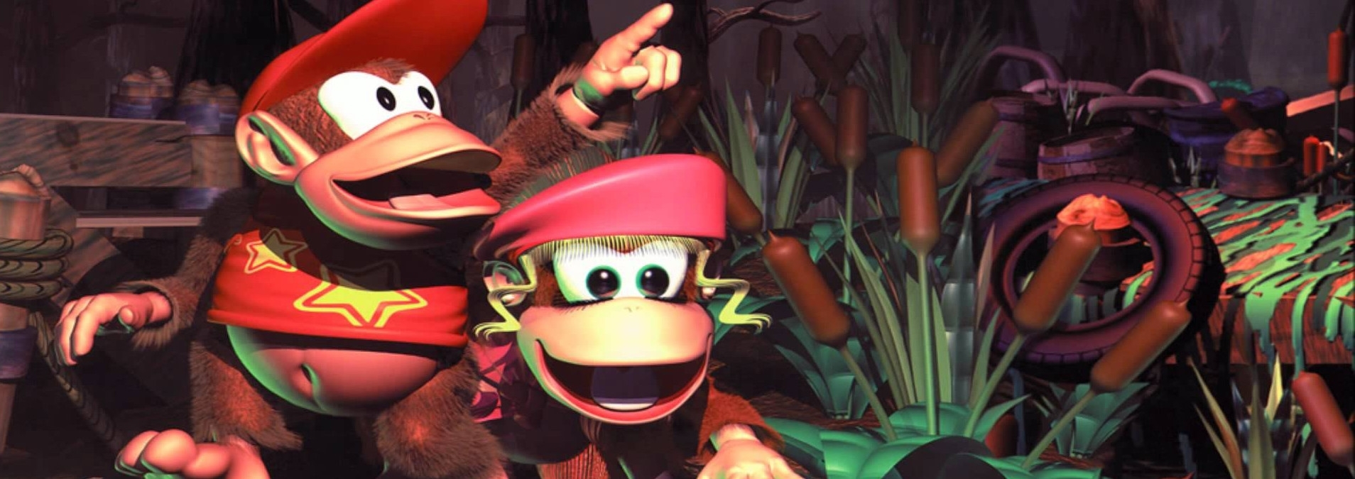 Banner Donkey Kong Country 2