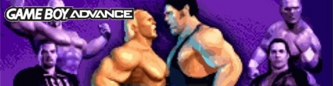 Banner Legends of Wrestling II