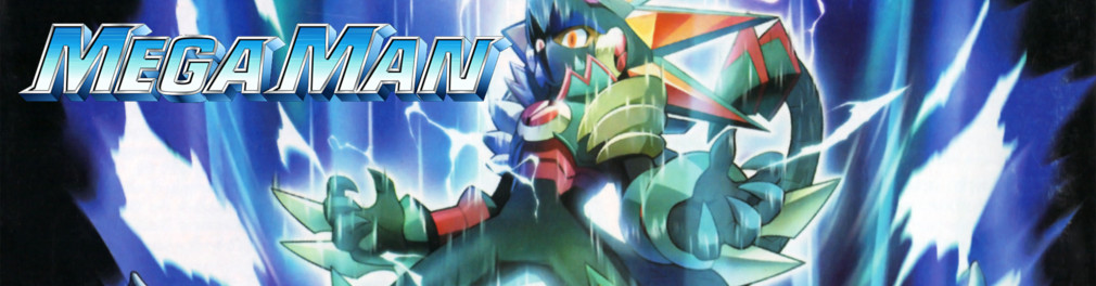 Banner Mega Man Battle Network 6 Cybeast Gregar