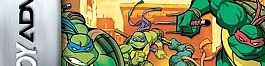 Banner Teenage Mutant Ninja Turtles