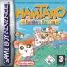 Box Hamtaro: Rainbow Rescue