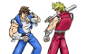 kopje Geheimen en cheats voor Double Dragon Advance