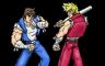 Geheimen en cheats voor Double Dragon Advance