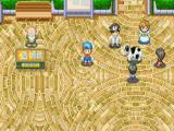 Op Rose Square kun je meedoen aan wedstrijden, zoals de mooiste koe wedstrijd.