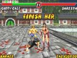 Met een laatste aanval gaat Tae Kwon Do tegen de vlakte, waardoor Karate het gevecht wint!