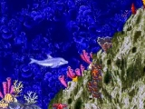 In 'Ecco the Dolphin' speel je met een dolfijn die zijn soortgenoten probeert te redden.