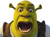 Ben je een fan van zowel <a href = http://www.mariogba.nl/gameboy-advance-spel-info.php?t=Mario_Kart_Super_Circuit target = _blank>Mario Kart</a> als Shrek? Dan is dit spel zeker iets voor jou!