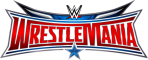 Afbeelding voor WWE Road to WrestleMania X8