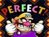Wario vindt zijn 3de spel alvast perfect!