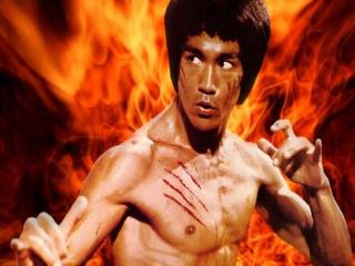 Speel als 's werelds bekendste Kung Fu-ster.