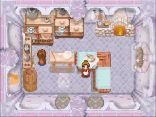 In de keuken van het kasteel wordt er lekker voedsel voor je klaargemaakt.