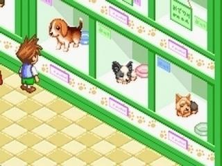 Welke hond verovert jouw hart?