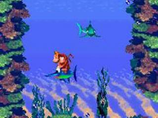 Ook onder water gaat het avontuur verder...