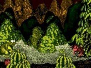 Donkey Kong Country Color: Screenshot