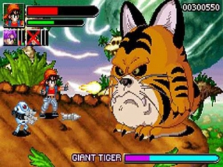 Deze gigantische tijger is duidelijk met het verkeerde been uit het bed gestapt...