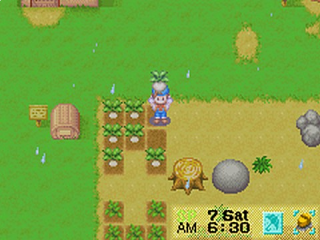 Aan het werk op je eigen boerderij