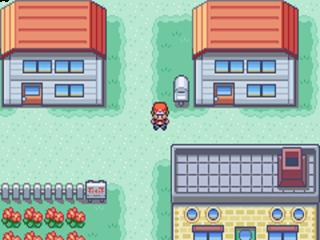 Probeer onderweg zoveel mogelijk Pokémon te vangen!