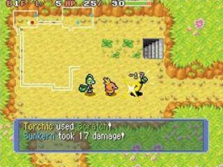 Dit is één van de vele dungeons waarin jij je avonturen gaat beleven!