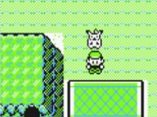 Het personage in Pokémon Yellow samen met Pikachu.