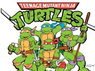 Speel als een van de 4 <a href = https://www.mariogba.nl/gameboy-advance-spel-info.php?t=Teenage_Mutant_Ninja_Turtles target = _blank>Teenage Mutant Ninja Turtles</a>.